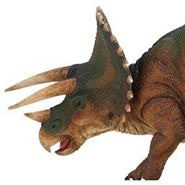 Triceratops animal spirit guide -