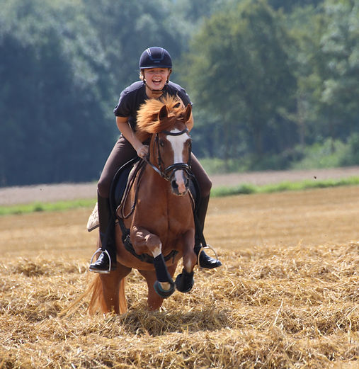 Ponyhof, reiterferien, Ponyhof nrw, ponyhof niedersachsen, reitferien, ferien für kinder