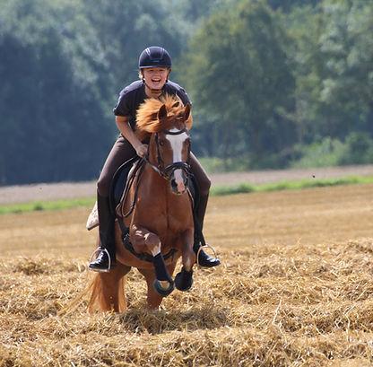 lanwermann, Ponyhof, reiterferien, Ponyhof nrw, ponyhof niedersachsen, reitferien, ferien für kinder