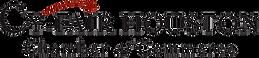 cy fair logo.png
