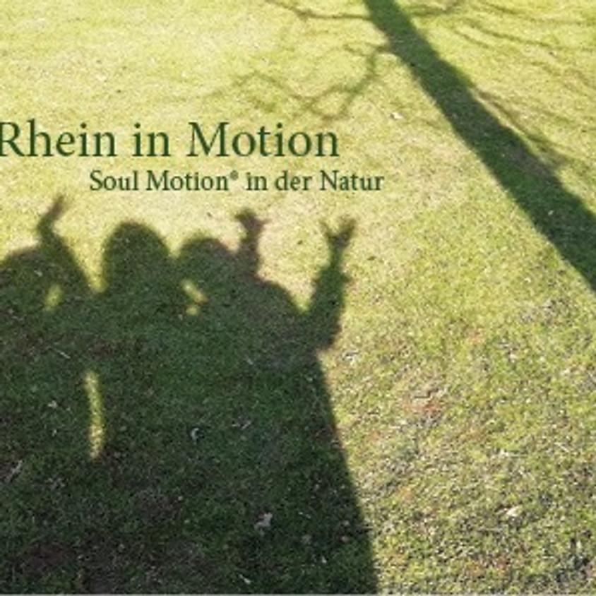 Rhein in Motion Workshop - Soul Motion draußen in der Natur