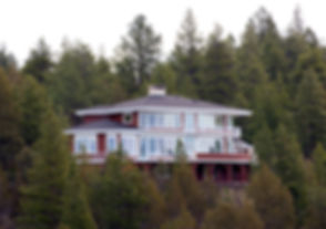 forest-house_Myd4vvFO.jpg