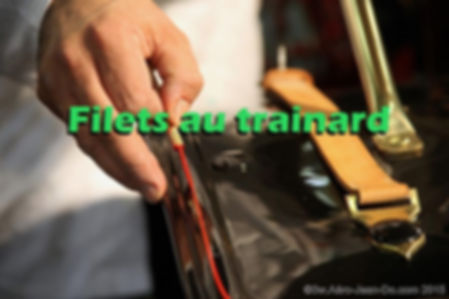 Filets au trainard freehand lines