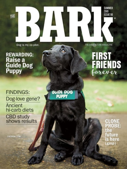 THE BARK Summer 2019.jpg