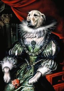 regal labrador golden - CROPPED.jpg