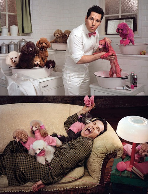 paul rudd and poodles.jpg