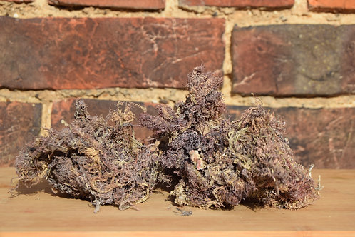 Purple Wildcraft Seamoss (raw, dry)