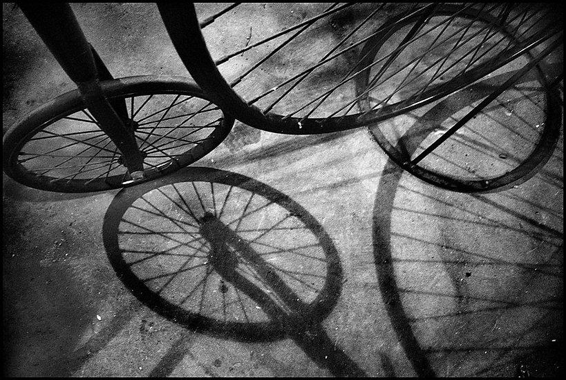 Circles | Carlo Riggi