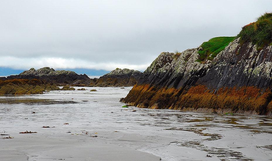 Low Tide (Irlanda)  | Luca Cortese