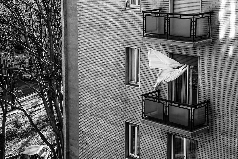 Wind 2 | Isabella Balena