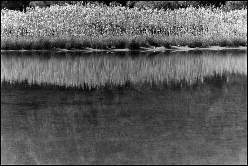 Riflessi 1, Marinello | Carlo Riggi