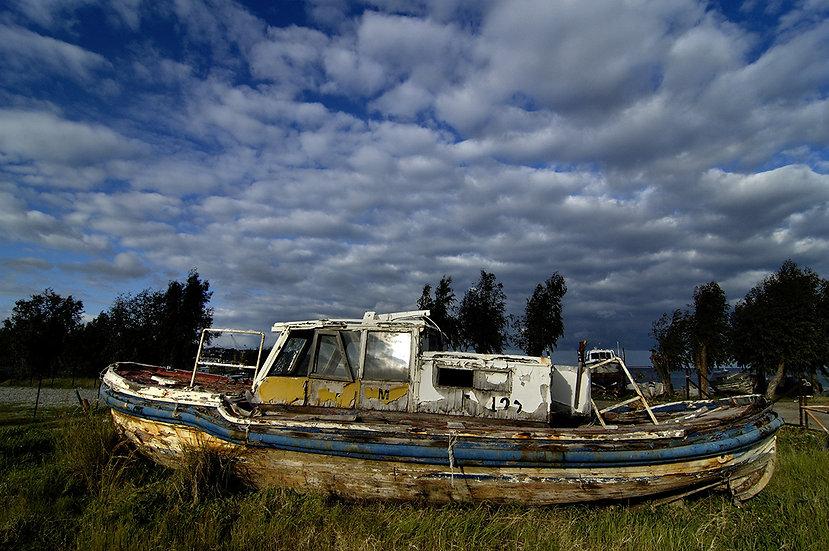 Barca in erba | Carlo Riggi