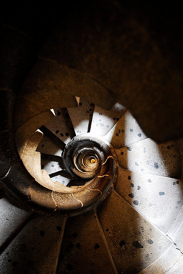 Spiral | Luca Cortese