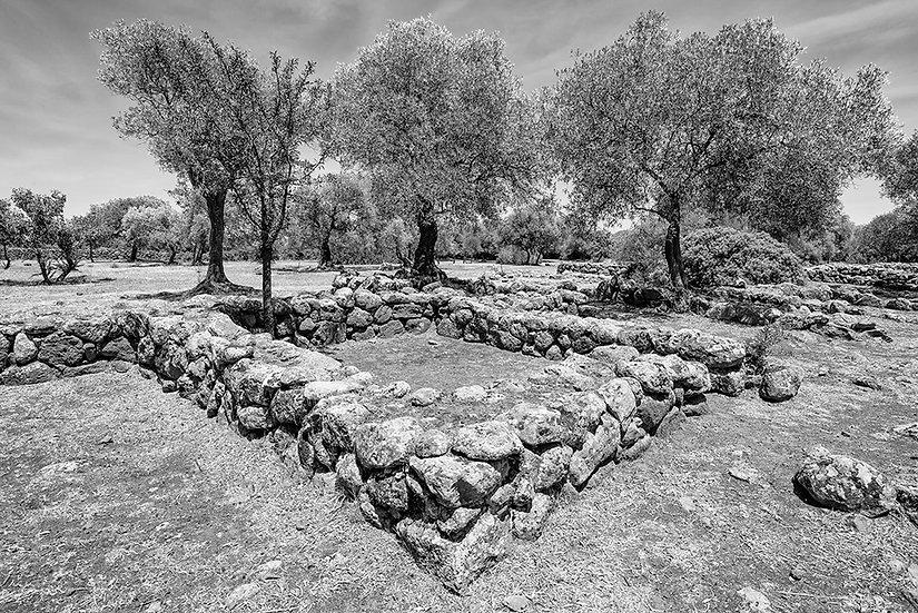Santa Cristina 1 (Sardegna) | Gianni Maffi