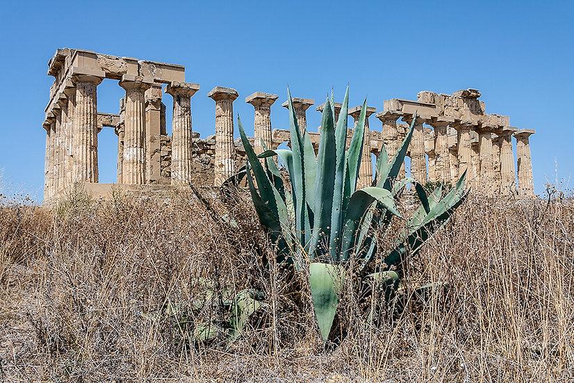 Tempio di Hera, Selinunte 2008 | Gianni Maffi