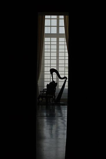 Musical silence | Luca Cortese