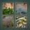 Thumbnail: Paesaggi minimi: 2, 4, 6, 7 | Gianni Maffi