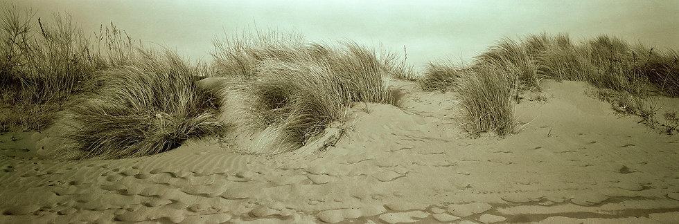 Spiaggia adriatica 1 | Isabella Balena