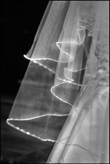 Sposa | Carlo Riggi