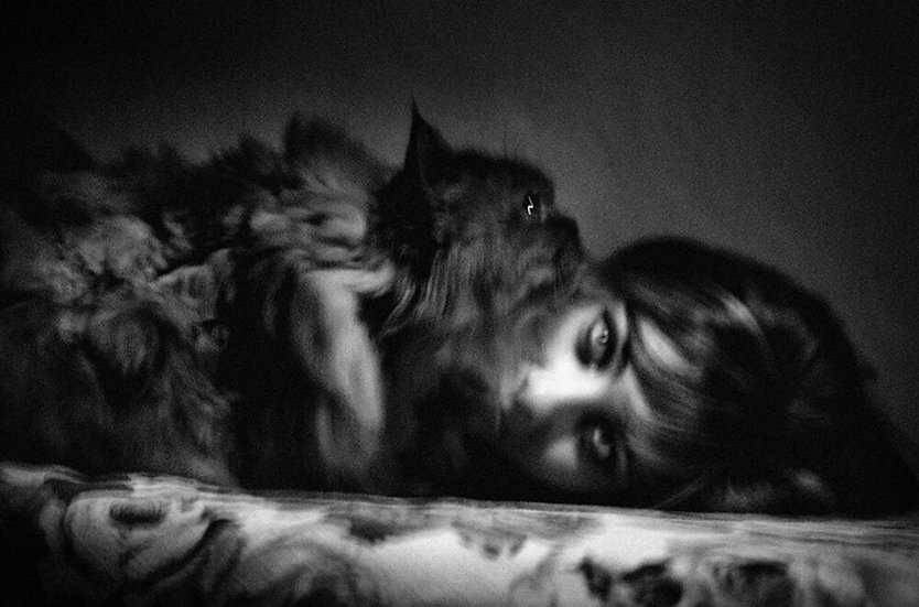 Occhi di gatto | Franco Carlisi