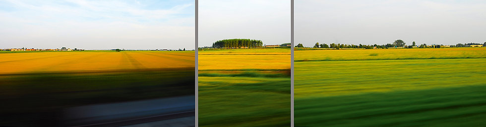 Agronomica ferroviaria | Luca Cortese