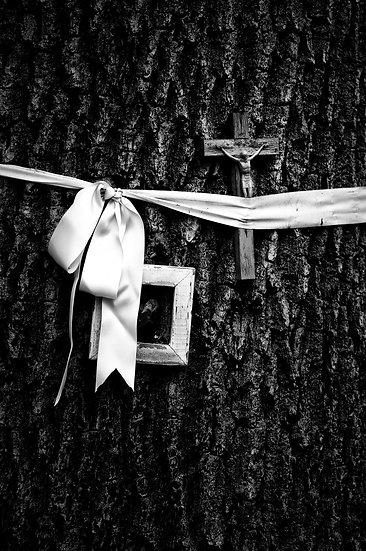 Wood | Pierfranco Fornasieri