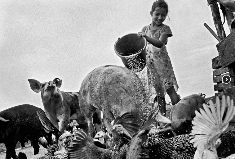 Bimba con il secchio (Ecuador) | Daniele Vita