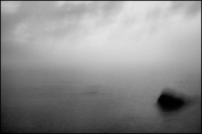 La possibilità di un'isola | Carlo Riggi