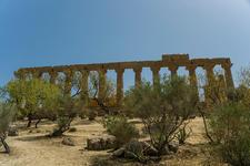 Luca Cortese_Valle dei Templi (Agrigento
