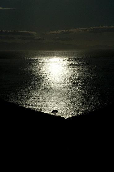 Vista mare| Luca Cortese