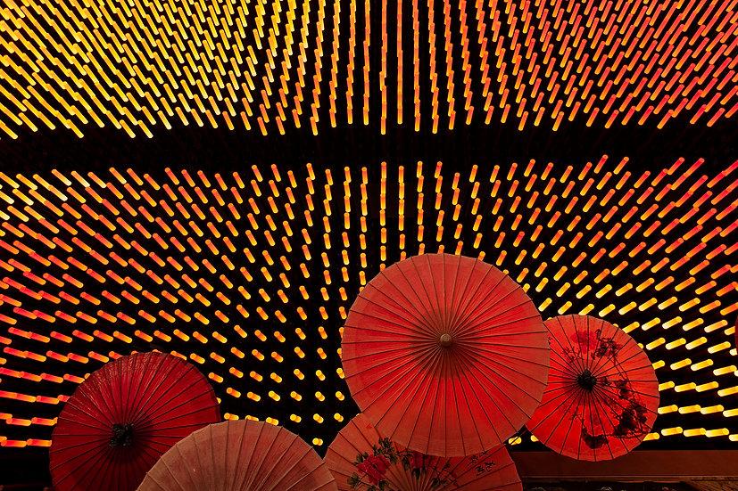 Red Expo China | Isabella Balena