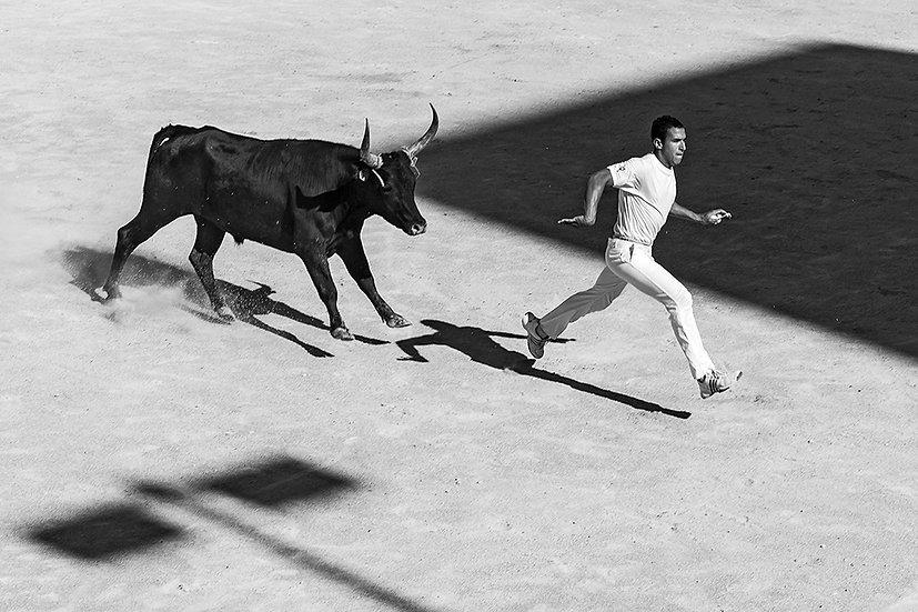 Tori ad Arles 4 | Gianni Maffi
