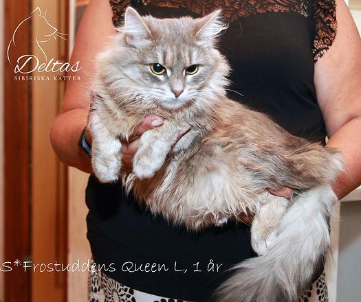 Queen_1år_1.jpg