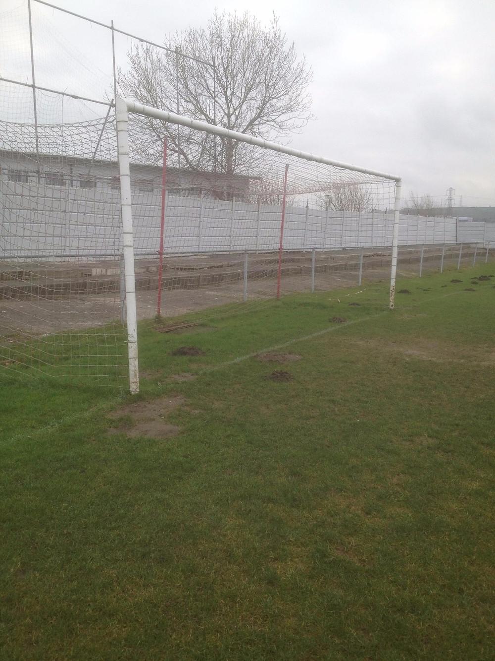 Mole in a goal in Lancashire