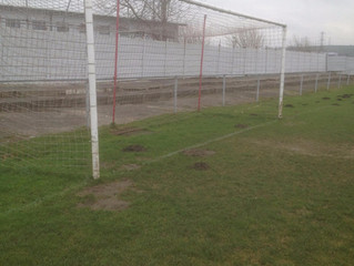 Mole in the goal