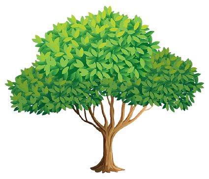tree_1308-36471-removebg-preview.png