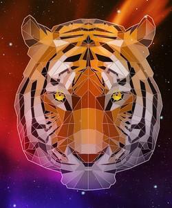 #bengaltiger #tiger #tigress #animals #f