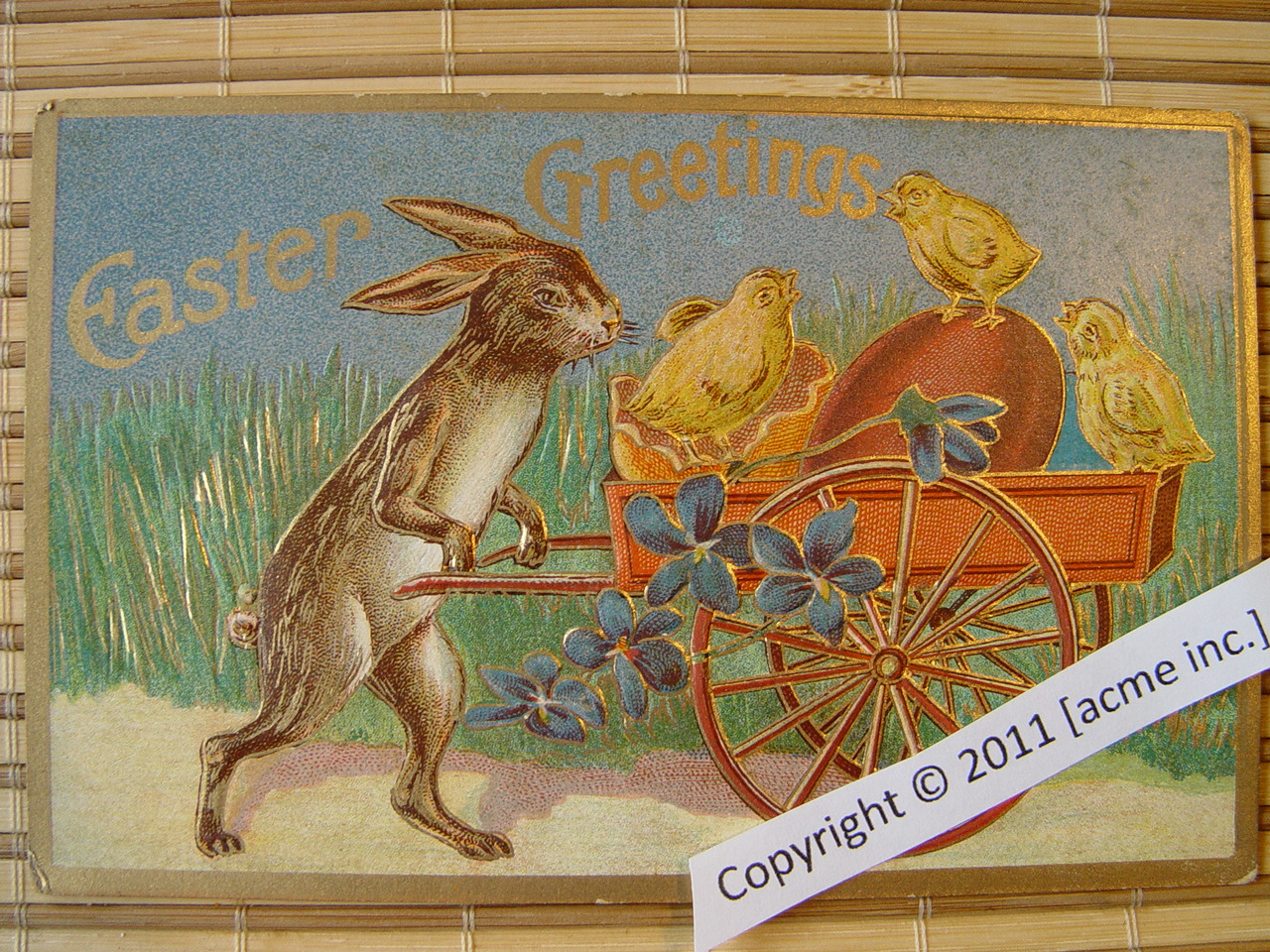 http://www.acme-inc.co.uk/greetingscards/DSC05460.jpg