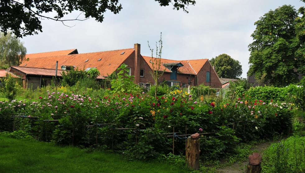 Groentetuin Landgoed de Leonardushoeve