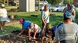Gardeners-3.jpg