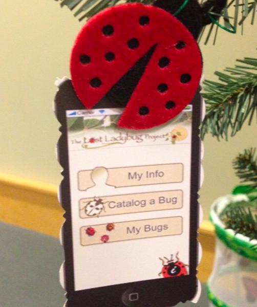 pgt tcl 27 lady bug app.png