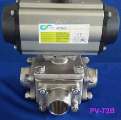 PV-T2B.jpg