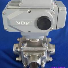 EV-T2B.jpg
