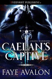 Caelan's_Captive-complete.jpg