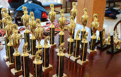 Chess Tournament Trophies