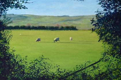 sheeppic.jpg