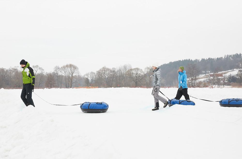 winter scene in snow | where do the bugs go in winter