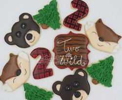 Wilderness cookies