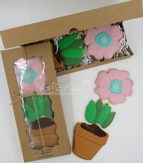 Flower Pot set.