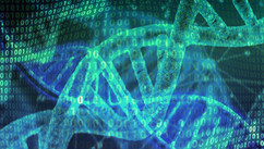 Bioinformatics: From the interface between biology and computer science